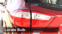 2013 Ford C-Max Hybrid SEL 2.0L 4 Cyl. Lights
