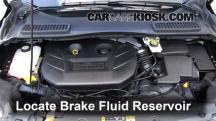 2013 Ford Escape SEL 2.0L 4 Cyl. Turbo Brake Fluid