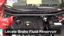 2013 Hyundai Elantra GT 1.8L 4 Cyl. Hatchback (4 Door) Brake Fluid
