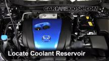 2013 Mazda CX-5 Sport 2.0L 4 Cyl. Coolant (Antifreeze)