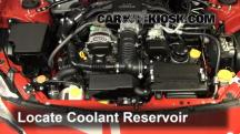 2013 Scion FR-S 2.0L 4 Cyl. Coolant (Antifreeze)