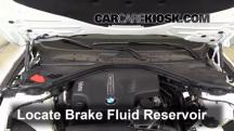 2014 BMW 320i 2.0L 4 Cyl. Turbo Brake Fluid