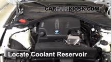 2014 BMW 320i 2.0L 4 Cyl. Turbo Coolant (Antifreeze)