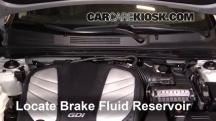 2014 Hyundai Azera Limited 3.3L V6 Brake Fluid
