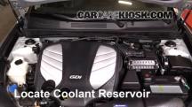 2014 Hyundai Azera Limited 3.3L V6 Coolant (Antifreeze)