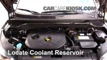 2014 Kia Soul ! 2.0L 4 Cyl. Coolant (Antifreeze)