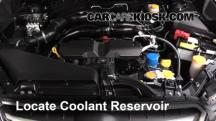 2014 Subaru XV Crosstrek Limited 2.0L 4 Cyl. Coolant (Antifreeze)