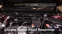 2015 Acura TLX 2.4L 4 Cyl. Brake Fluid