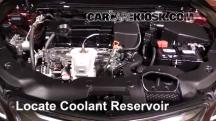 2015 Acura TLX 2.4L 4 Cyl. Coolant (Antifreeze)