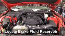 2015 Ford Mustang EcoBoost 2.3L 4 Cyl. Turbo Brake Fluid