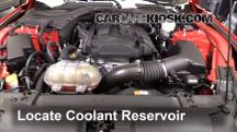 2015 Ford Mustang EcoBoost 2.3L 4 Cyl. Turbo Coolant (Antifreeze)