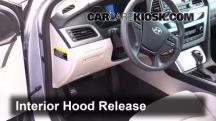 2015 Hyundai Sonata SE 2.4L 4 Cyl. Capó