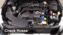 2015 Subaru Legacy 2.5i Premium 2.5L 4 Cyl. Hoses