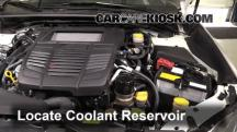2015 Subaru WRX Limited 2.0L 4 Cyl. Turbo Coolant (Antifreeze)