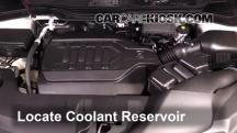 2016 Acura MDX SH-AWD 3.5L V6 Coolant (Antifreeze)