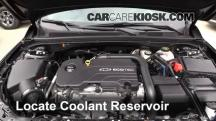 2016 Chevrolet Malibu LT 1.5L 4 Cyl. Turbo Coolant (Antifreeze)