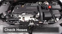 2016 Chevrolet Malibu LT 1.5L 4 Cyl. Turbo Hoses