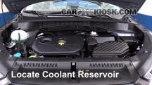 2016 Hyundai Tucson SE 2.0L 4 Cyl. Coolant (Antifreeze)