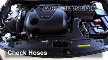 2016 Nissan Maxima SR 3.5L V6 Hoses