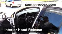 2016 Volkswagen GTI S 2.0L 4 Cyl. Turbo Hatchback (4 Door) Capó