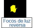 focos de luz de reversa
