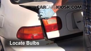 1995 Honda Civic EX 1.6L 4 Cyl. Coupe (2 Door) Luces Luz trasera (reemplazar foco)