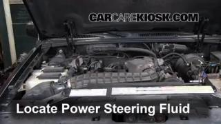 2000 Ford Explorer XLS 4.0L V6 Fluid Leaks Power Steering Fluid (fix leaks)
