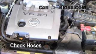 2000-2003 Nissan Maxima Hose Check