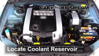 2004 Hyundai XG350 L 3.5L V6 Coolant (Antifreeze) Fix Leaks