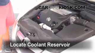 How to Add Coolant: Acura TL (2004-2008)