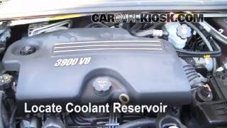 2008 Chevrolet Uplander LS 3.9L V6 Coolant (Antifreeze) Flush Coolant