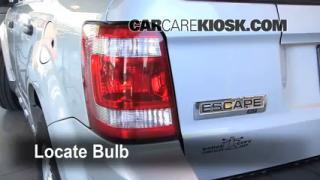 2008 Ford Escape XLT 3.0L V6 Lights Tail Light (replace bulb)