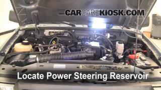 2008 Ford Ranger XL 2.3L 4 Cyl. Standard Cab Pickup Pérdidas de líquido Líquido de dirección asistida (arreglar pérdidas)