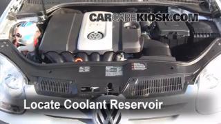 2008 Volkswagen Rabbit S 2.5L 5 Cyl. (2 Door) Coolant (Antifreeze) Flush Coolant