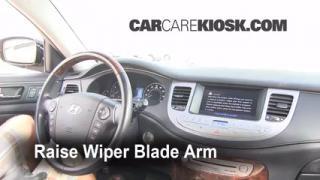 2009 Hyundai Genesis 4.6 4.6L V8 Windshield Wiper Blade (Front) Replace Wiper Blades