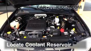 2011 Ford Escape XLT 3.0L V6 FlexFuel Coolant (Antifreeze) Flush Coolant