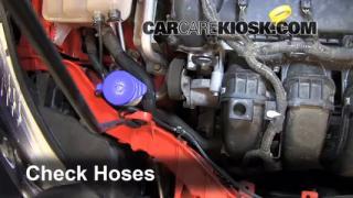 2012 Ford Focus SE 2.0L 4 Cyl. Sedan Hoses Check Hoses