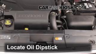 2013 Ford Flex Limited 3.5L V6 Turbo Sport Utility (4 Door) Fluid Leaks Oil (fix leaks)