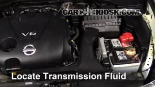 2013 Nissan Maxima SV 3.5L V6 Transmission Fluid Check Fluid Level